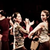 Pasion y Arte Fall Flamenco Classes!