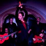 Gala Flamenca – Special Promo